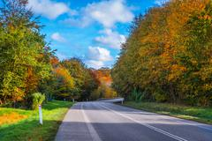 Road with a curve in autumn - stock photo