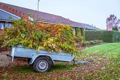Garden waste in a wagon Stock Photos