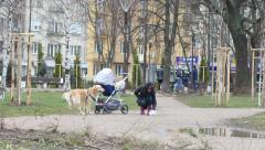 Walk with dog in park woman pick up pet poop in bag and take away Stock Footage