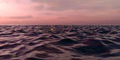 Pink Sunset Over The Ocean - stock illustration