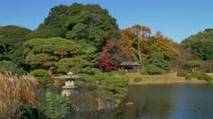 Shinjuku Gyoen National Garden Fall Autumn Landscape Tokyo Japan Asia - stock footage