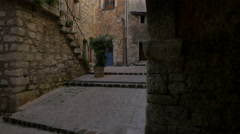 A green plant next to the stone stairs of a building in Tourrettes-sur-Loup Stock Footage