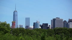 Birds Frolic Along New York City Skyline Stock Footage
