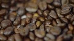 Unknown man picking coffee beans from white background HD Stock Footage