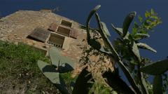 Low angle of cactus and other plants next to a building in Tourrettes-sur-Loup Stock Footage
