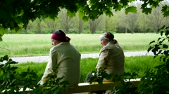 Two senior old age women sit on a banch in a park back view - stock footage