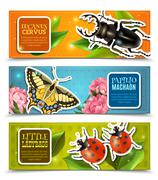 Insects Banners Set - stock illustration