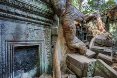 Angkor Wat Cambodia. Ta Prohm Khmer ancient Buddhist temple Stock Photos