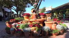 Garden fountain. Stock Footage