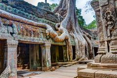 Angkor Wat Cambodia. Ta Prohm Khmer ancient Buddhist temple - stock photo