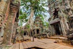 Angkor Wat Cambodia. Ta Prohm Khmer ancient Buddhist temple Stock Photos
