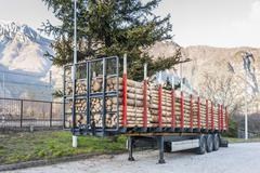 Trucks charged with wood logs waiting for delivery - stock photo
