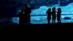 Little children look on deep sea inhabitant, black kid silhouettes against blue Stock Footage
