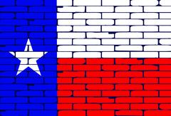 Texan Painted Wall Flag - stock illustration
