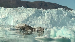 Moving shot sailing through smaller icebergs in front of glacier wall Stock Footage