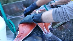 Cleaning a salmon filet on a dock Stock Footage