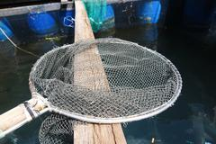 Landing net and a fishcorral Kuvituskuvat