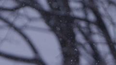 Slow motion snowflakes falling in winter landscape - Background Element Stock Footage