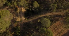 4K Aerial, Flight over a Andalusian forest, Spain Stock Footage
