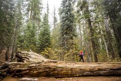 Caucasian girl walking in Yosemite National Park, California, United States Stock Photos