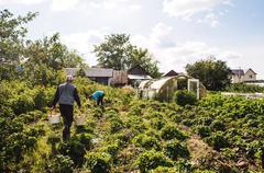 Caucasian farmers working in garden Stock Photos