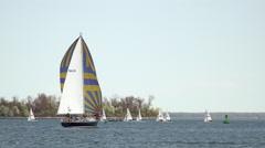 Annapolis Naval Academy Sailing sailboats water HD Stock Footage