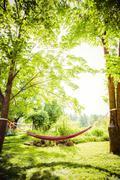 Hammock between trees in backyard - stock photo