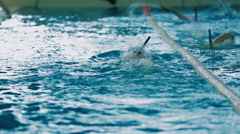 Training of athletes in the pool - stock footage
