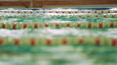 Swimming in the pool training Stock Footage