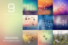 Organisms infographic with unfocused background Stock Illustration