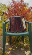 Russian accordion on the chair Kuvituskuvat