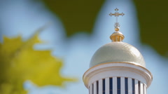 Dome of church through green leaves Stock Footage