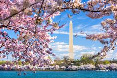 Washington DC, USA at the tidal basin with Washington Monument Stock Photos