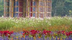 Jim Thompson Flowers Stock Footage