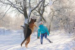 Girl trains her dog German Shepherd Stock Photos