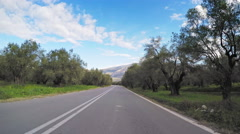 Olive groves POV vehicle car drive country road trees plantation agriculture Stock Footage