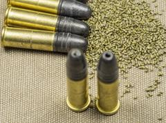 .22 caliber Long rifle Rimfire Ammunition with smokeless powder on canwas - stock photo