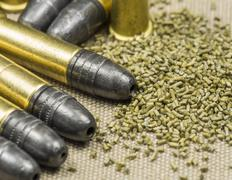 .22 caliber Long rifle Rimfire Ammunition with smokeless powder on canwas Stock Photos