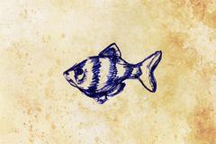 The pen drawing aquarium fish on old paper - stock illustration
