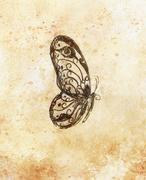 Illustration of a butterfly, mixed medium, abstract color background Stock Illustration