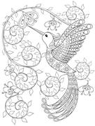 Coloring page with Hummingbird, zentangle flying bird  for adult - stock illustration