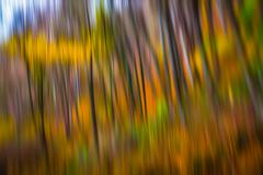 Abstract nature background Stock Photos