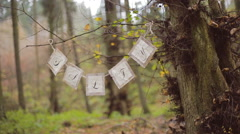 Eco forest wedding salty bar catering - stock footage