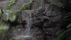 Washington DC National Botanical Garden waterfall HD Stock Footage