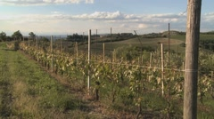 Vineyards towards the sky in Piedmont, Italy (1) Stock Footage