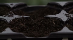 Sowing seeds in springtime using planting pots with compost - stock footage