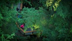 Looking Down On People On Forest Walkway Stock Footage