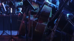 Line of a Double Basses Section is Playing Synchronously Musicians are Playing Stock Footage