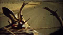 1939: Looking out car windshield driving with whitetail deer antlers. Stock Footage
