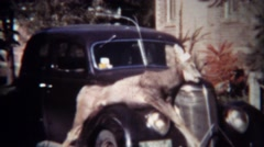 1939: Men inspect hunted dead whitetail deer strapped to classic car hood. - stock footage